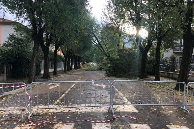 Via Tommaseo chiusa per alberi caduti © www.giornaledibrescia.it