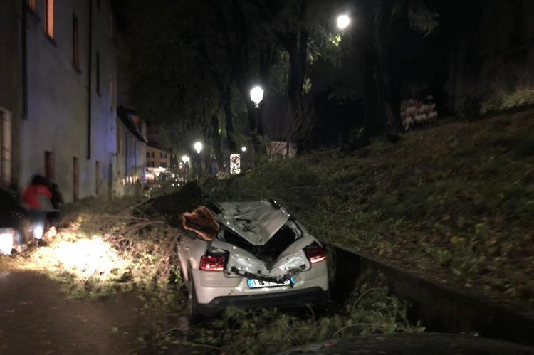 In castello, albero cade su un'auto