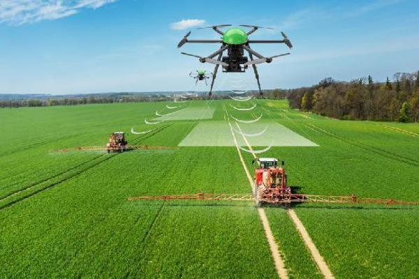 Anche i droni in campo sul fronte dell'agricoltura 4.0 - © www.giornaledibrescia.it