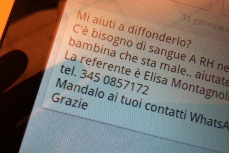 bufala sangue per Elisa Montagnol